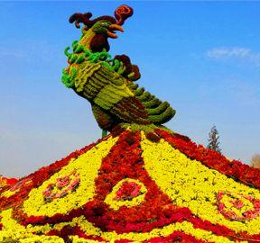 国庆立体花坛塑造了城市景观