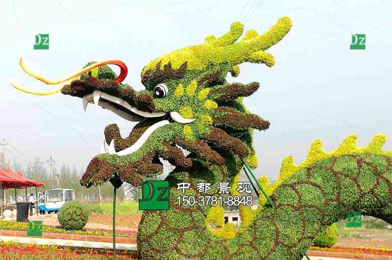植物绿雕龙