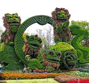 五色草造型绿雕制作工艺