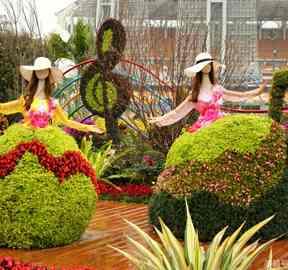 五色草绿雕制作厂家改进立体花坛工艺