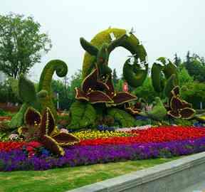 广州五色草绿雕立体花坛引领广东视觉盛宴