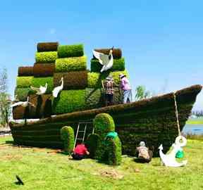 陕西西安繁花五色草立体花坛造型迎宾客