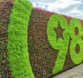 四川成都五色草造型用色彩塑造精致景观