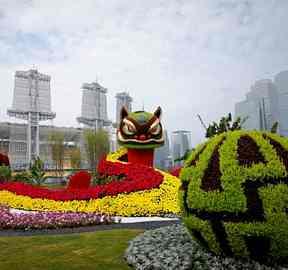 上海《奔腾》国庆五色草立体花坛造型,传递社会正能量