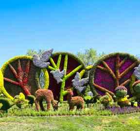 山东济南五色草绿雕,打造美丽城市样板