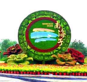 天津地域特色立体花坛成网红新景观