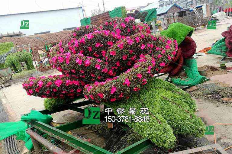 立体花坛养护