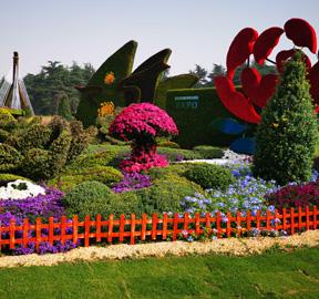 制作立体植物绿雕景观植物的选择与注意事项