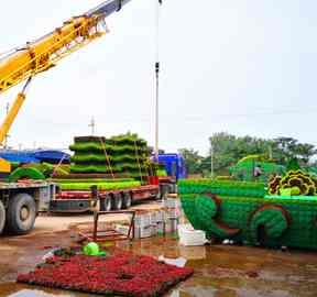 植物绿雕景观制作厂家专业详解立体绿雕施工流程,看完全明白!