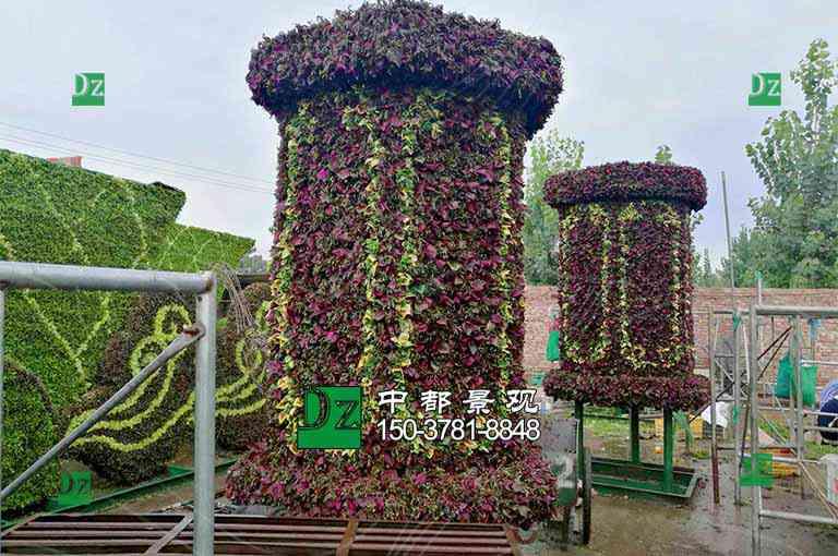制作植物绿雕造型植物